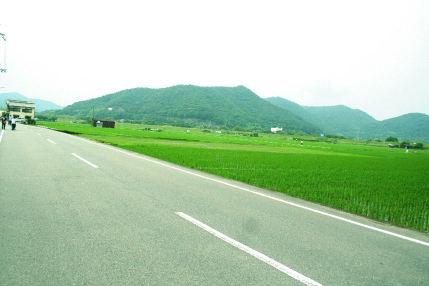 Photo_428