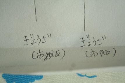 Photo_463